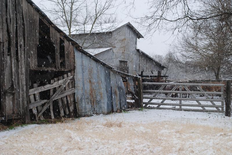 Barn Pictures in Pot Rack Creek, Texas